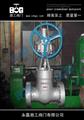 Z541Y伞齿轮高压电站闸阀