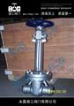 DZ61Y低温焊接式闸阀